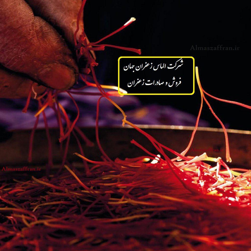 صادرات زعفران به بلژیک